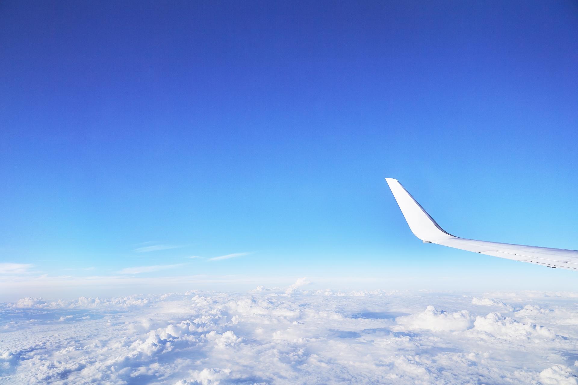 【就活中、息抜きもしていますか?】自宅から楽しめる、ピヨコ流1day海外旅行
